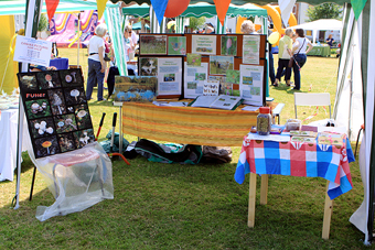 WCV Stall, Kings Worthy Fete, May 2009 (616 KB)