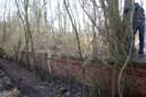 Platform scrub clearance, Worthy Down Halt, February 2009 (736KB)