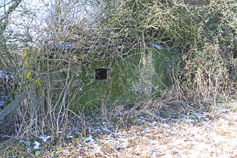 Pillbox Suitable for Bat Hibernacular, Disused DNSR Railway, December 2009 (796KB)