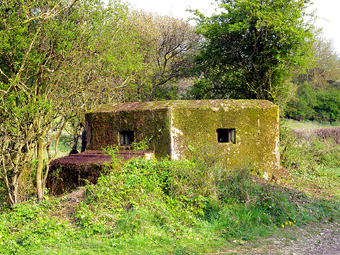 Pillbox clearance, DNSR Footpath, April 2009 (862KB)