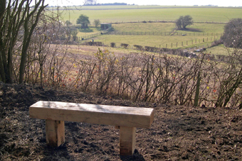 Bench & viewpoint, DNSR footpath, March 2006 (444KB)