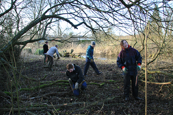 Scrub Clearance, Winnall Moors, January 2007 (660KB)